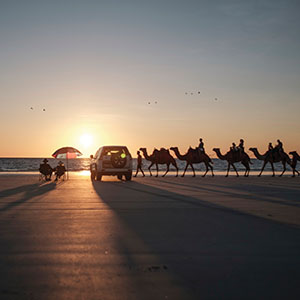Camels at sunset on Cable Beach