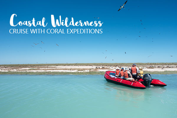 MC Header Coral Expeditions NINGALOO Birdwatching from Zodiac credit Rich Pagen
