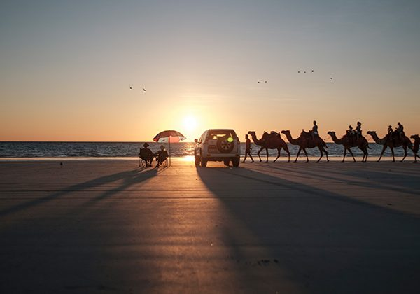 NEW WEB Gallery TWA 0005 112237 56 Camels at sunset on Cable Beach Broome Mandatory credit Tourism Western Austr
