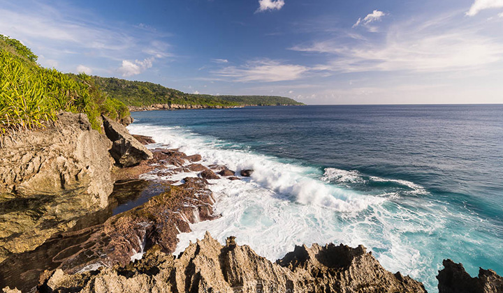 NEW WEB Gallery XCH 0002 Christmas Island A59I5787 Credit Faulkner Photography