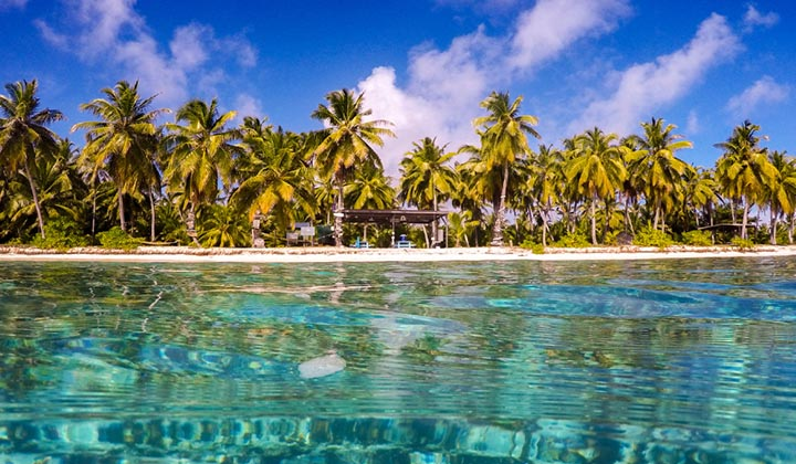 NEW WEBSITE Gallery Cocos Dive CCK 0000 WEB FB POST Direction Island Inwater HR 1 of 3 Credit Rik Soderlund