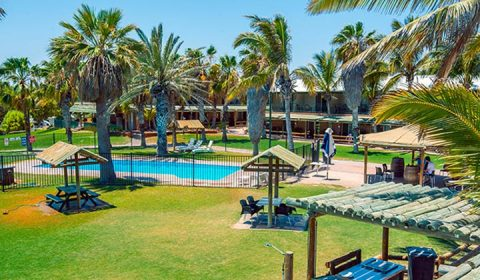 NEW WEBSITE Gallery Ningaloo Reef Resort RAC 0017 725x420 NRR Pool