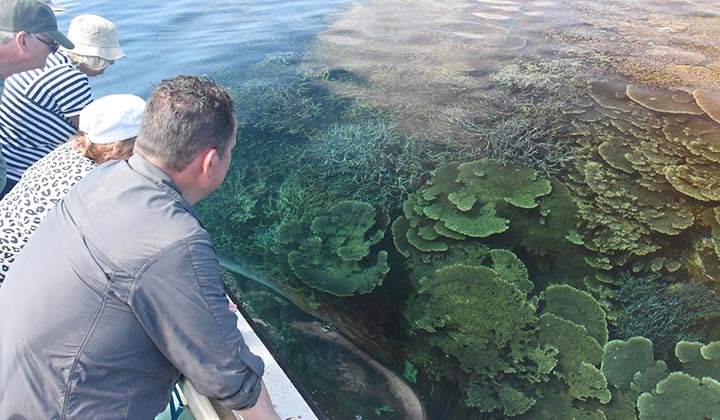 NEW WEBSITE Gallery 0000 BKB Eco Abrolhos Islands 5 Day 15