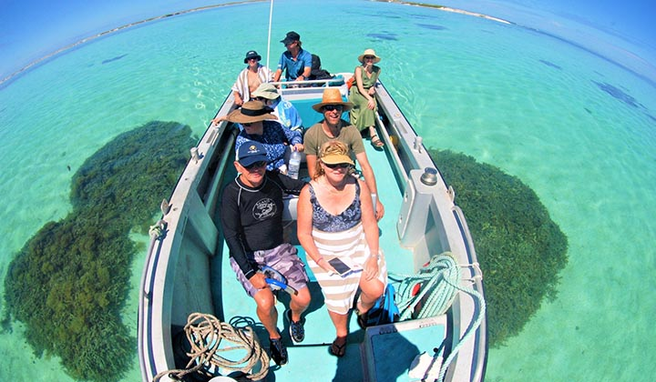 NEW WEBSITE Gallery 0001 BKB Eco Abrolhos Islands 5 Day 10