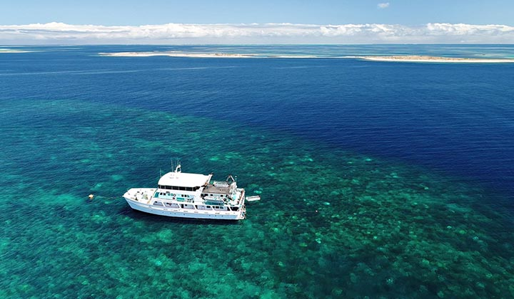 NEW WEBSITE Gallery 0002 BKB Eco Abrolhos Islands 5 Day 29