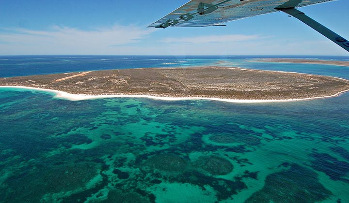 NEW WEBSITE Gallery 0004 BKB Eco Abrolhos Islands 5 Day 37