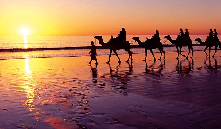 NEW WEBSITE Gallery 0004 experience broome Camels Cable