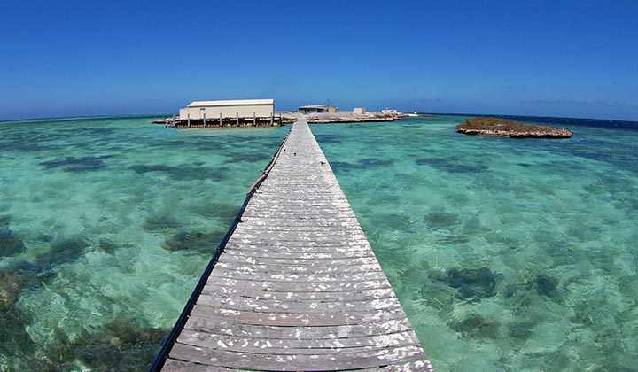 NEW WEBSITE Gallery 0005 BKB Eco Abrolhos Islands 5 Day 17