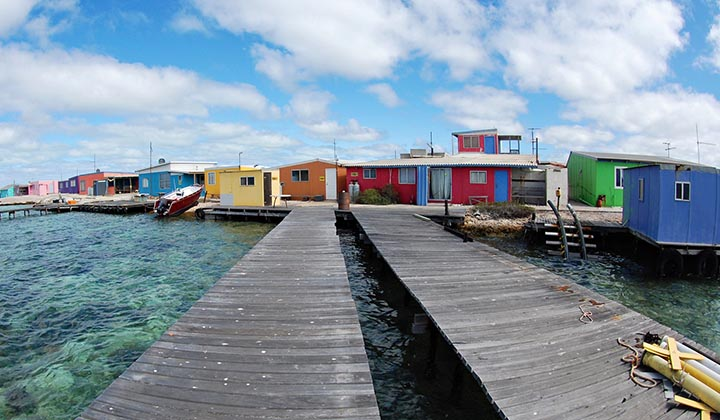 NEW WEBSITE Gallery 0011 BKB Eco Abrolhos Islands 5 Day 26