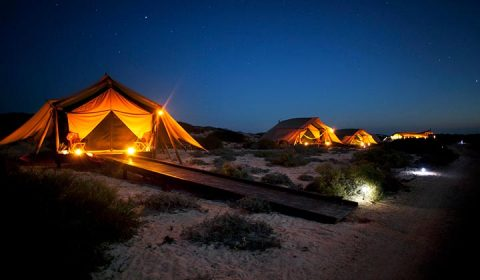 NEW WEBSITE Gallery 0020 Sal Salis Tents at Night1