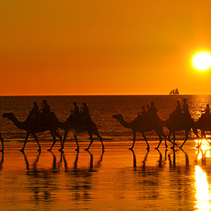 WEB BME  0009 110105 2 Sunset camel ride at Cable Beach Credit Summer Day