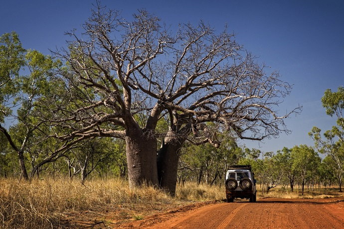 Experience the most of the Kimberley on a 4WD Kimberley Tour