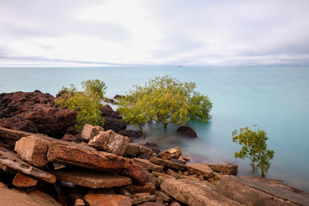Top 4 Free Activities to Do in Broome