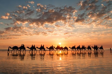 5 Reasons Why You Should Book a Trip to Broome