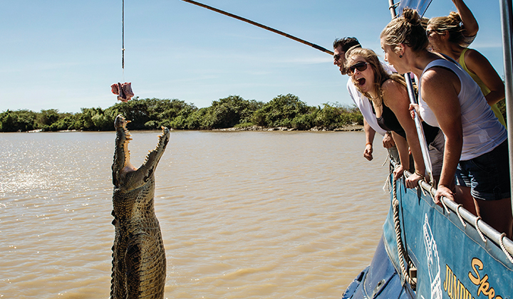 NEW WEBSITE Gallery 720 x 420 0002 Jumping croc 2 Adelaide River
